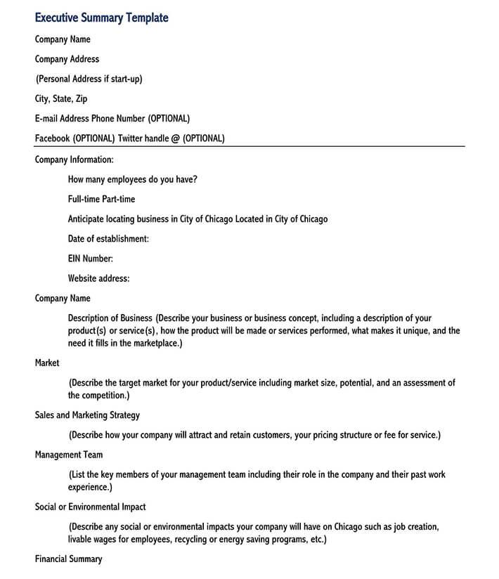 executive summary template google docs 2