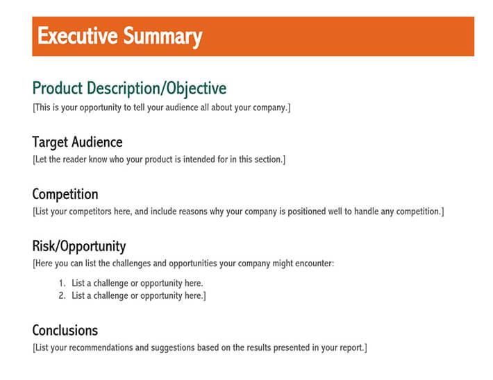 executive summary outline 2