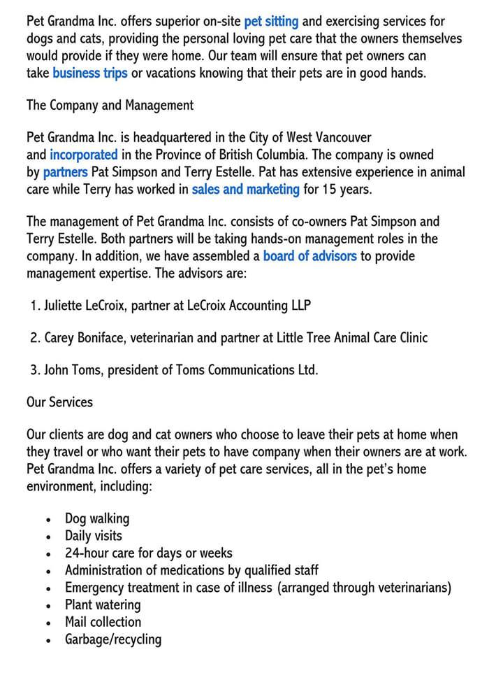 healthcare executive summary template 2