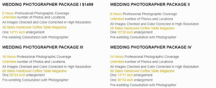 photography rfp examples