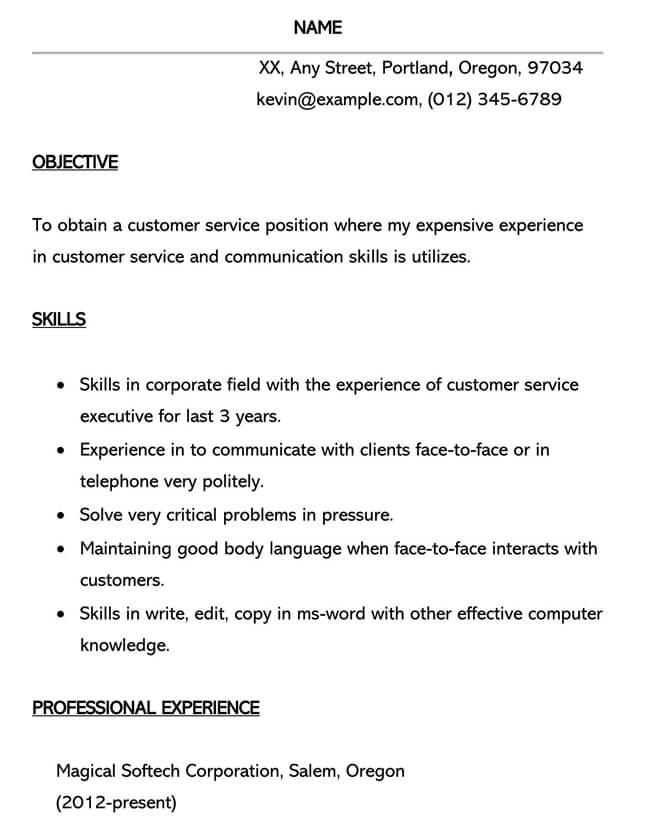 Customer Service Resume Template 17