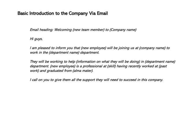 Basic Introduction to the Company Via Email