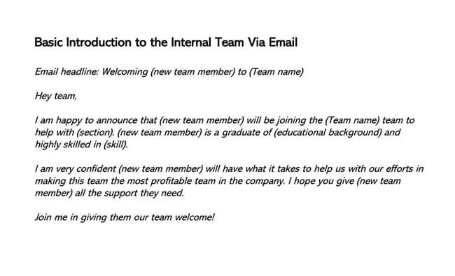 Basic Introduction to the Internal Team Via Email