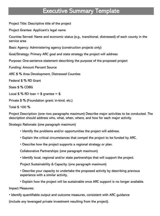 Executive Summary Template 13