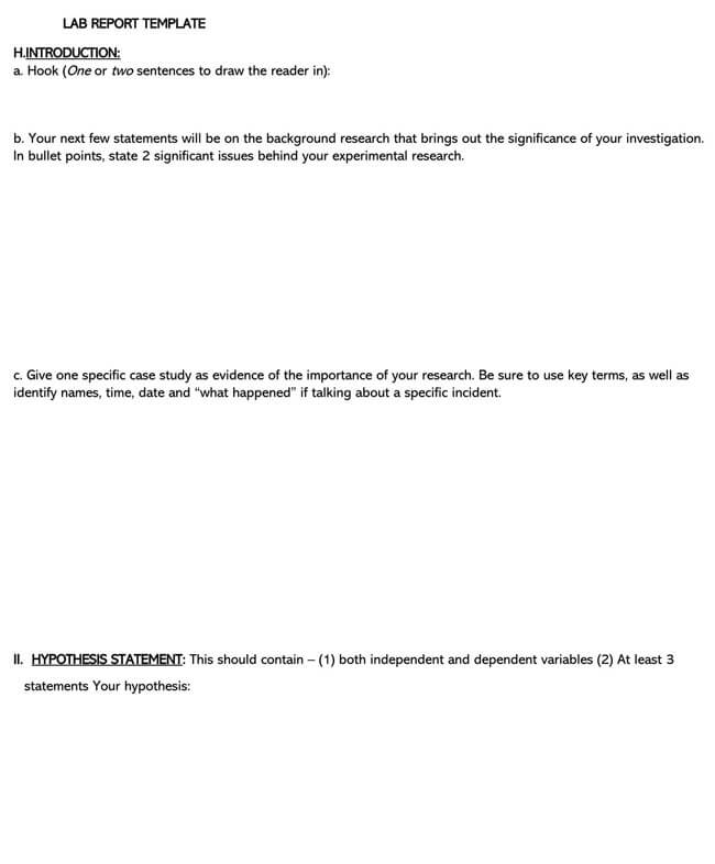 Lab Report Template 11