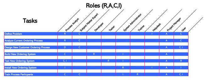 RACI Chart 12