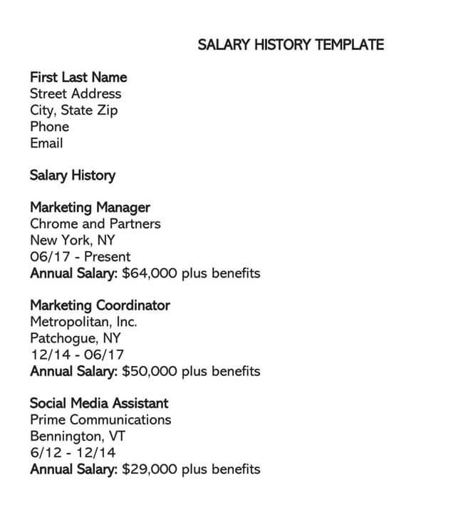 Salary History Template 02