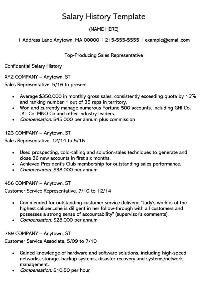 Salary History Template 04