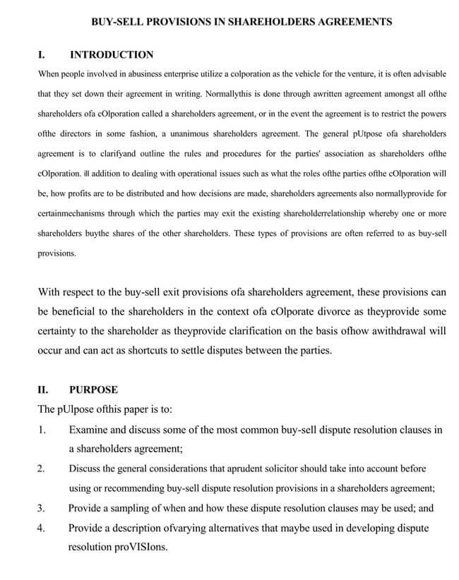 Shareholder Agreement 19