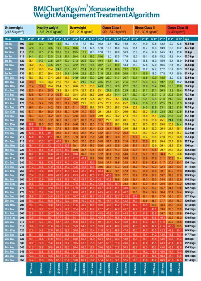 BMI Chart Template 02