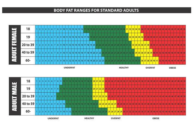BMI Chart Template 03