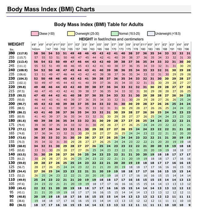 BMI Chart Template 05