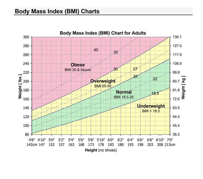 BMI Chart Template 06