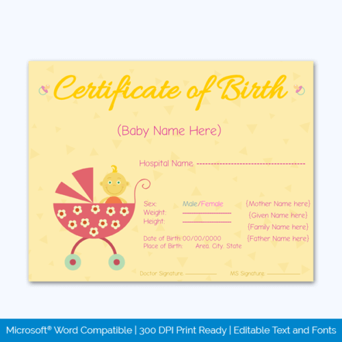 Birth Certificate PDF Download