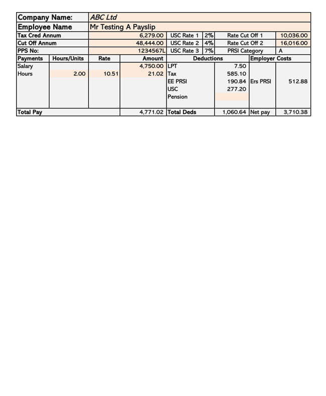 Small Business Payroll Template 09