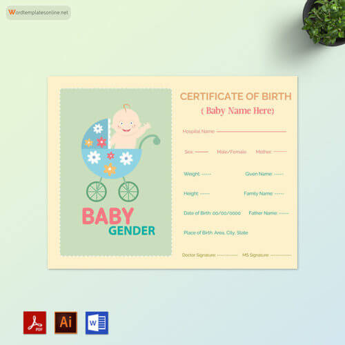 Baby Birth Certificate Free