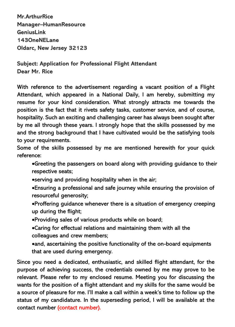 Application for Professional Flight Attendant