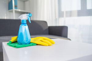 Cleanup Kit for Cleaning House
