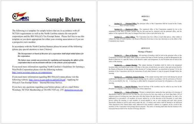 Excellent bylaws template photos resume ideas namanasacom for Non profit bylaws template free