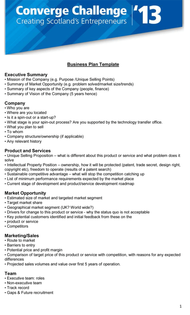 Executive Summary Template For PDF
