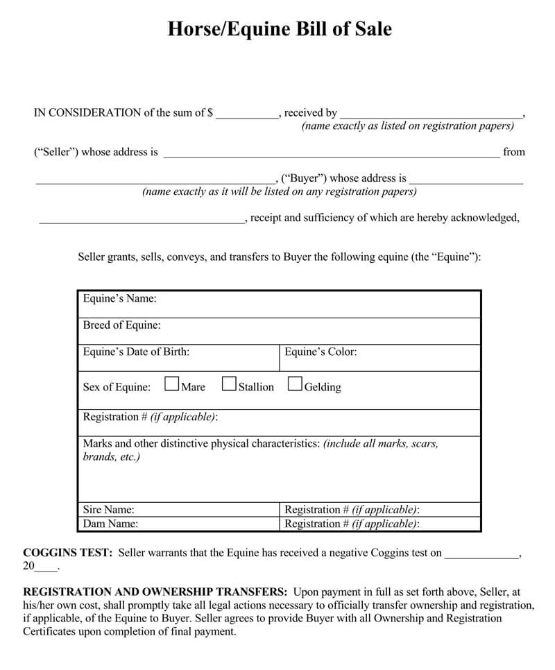 Horse Bill of Sale Purchase Form 02