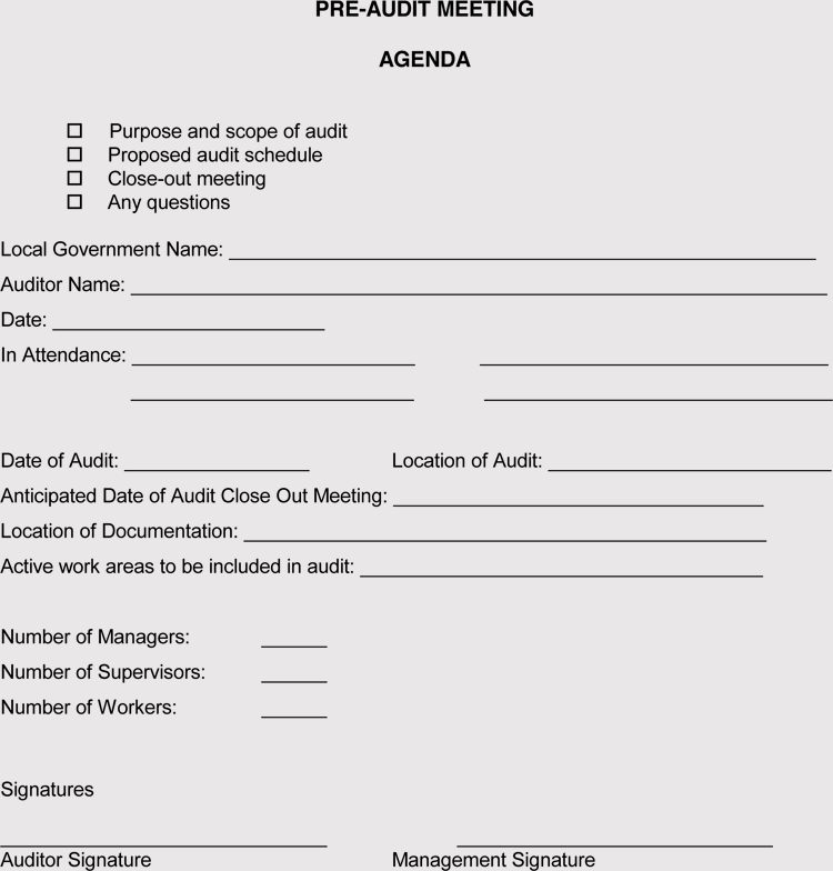 External Audit Agenda