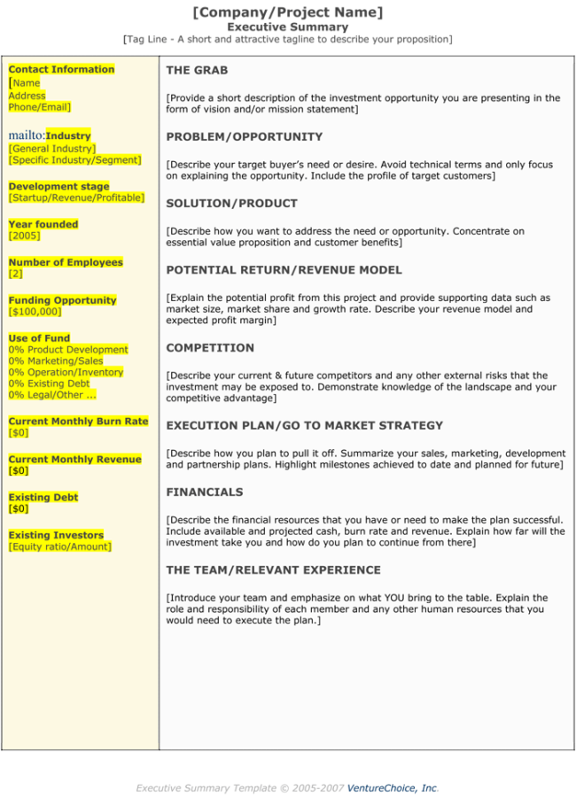 project executive summary template koni polycode co