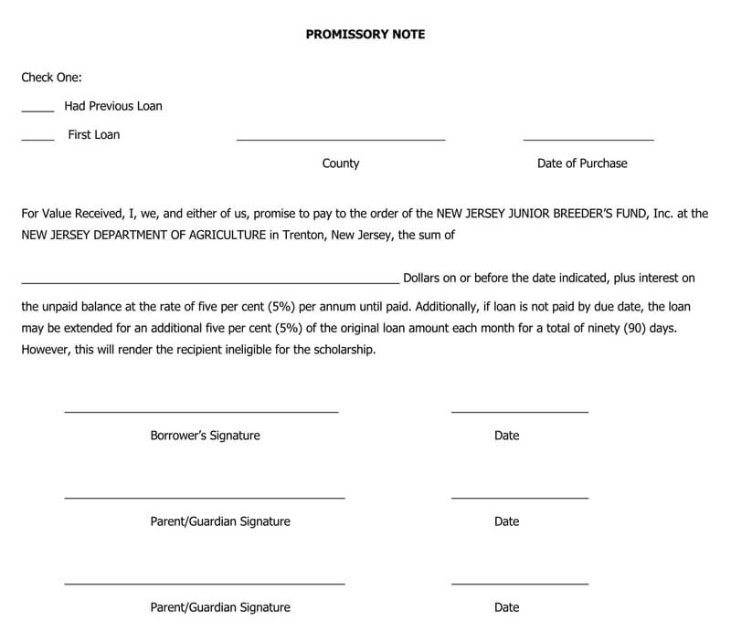 Sample Promissory Note PDF Template