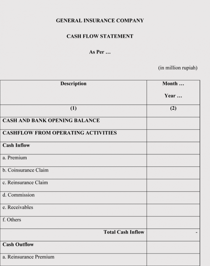 Insurance Company Cash Flow Statement
