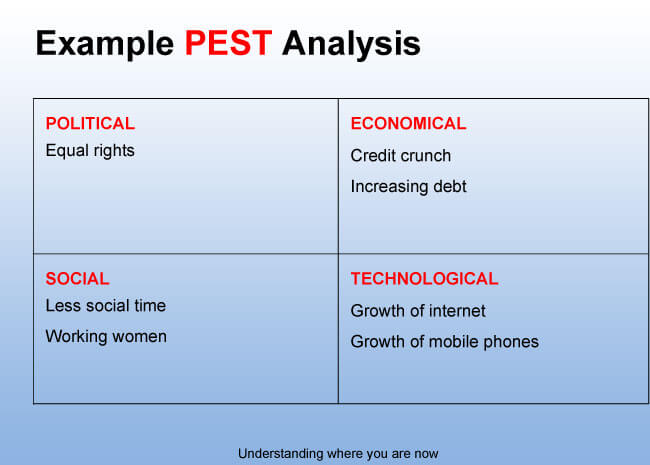 pest analysis example