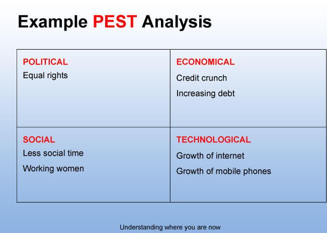 Simple PEST Analysis Example